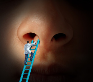 Nose + man on ladder
