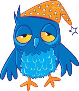 Owl - insomnia 2