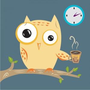 Owl - insomnia